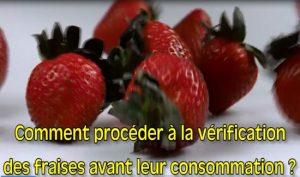 Bedikat fraises