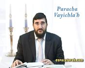 Paracha Vayichla'h: stupéfaction le jour du mariage !
