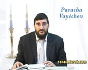Paracha Vayéchev : Stupeur dans un hospice.