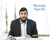 Paracha Vaye'hi : Le Maarchal s'est il trompé ?