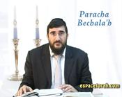 Paracha Bechala'h.