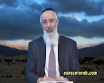 Parachat Nitsavim-Vayele'h :Rattrapper les déserteurs.