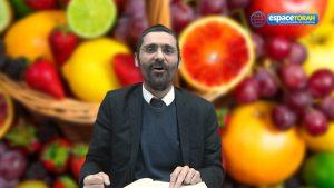 Tou Bichvat : La gratitude de l'homme envers la Terre