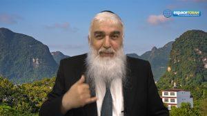La Torah est un choix personnel !